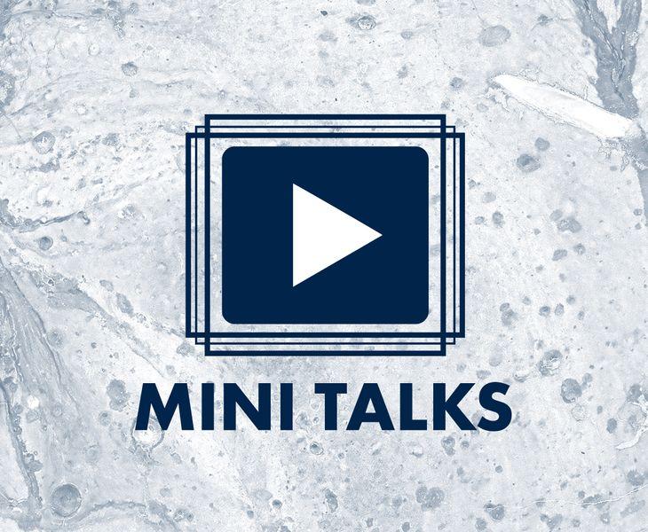 Mini Talks